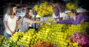 Nông sản ĐBSCL giảm sức cạnh tranh với hàng Thái, Trung Quốc do đâu?