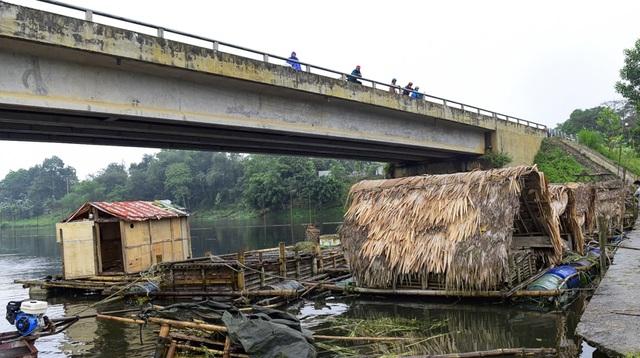 Thủy sản chết bất thường hàng loạt, dân khốn khổ tìm nơi lánh nạn cho cá - 2