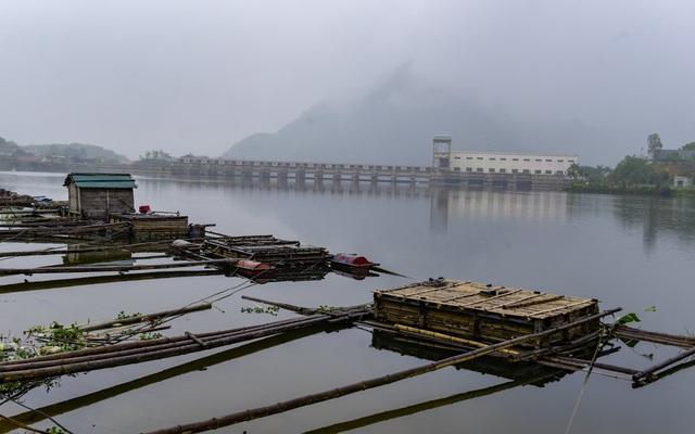 Thủy sản chết bất thường hàng loạt, dân khốn khổ tìm nơi lánh nạn cho cá - 6