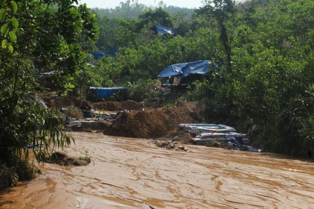 Vàng tặc ở Bồng Miêu: Tiền công ngày 200 nghìn, thấy công an là phải trốn - 8