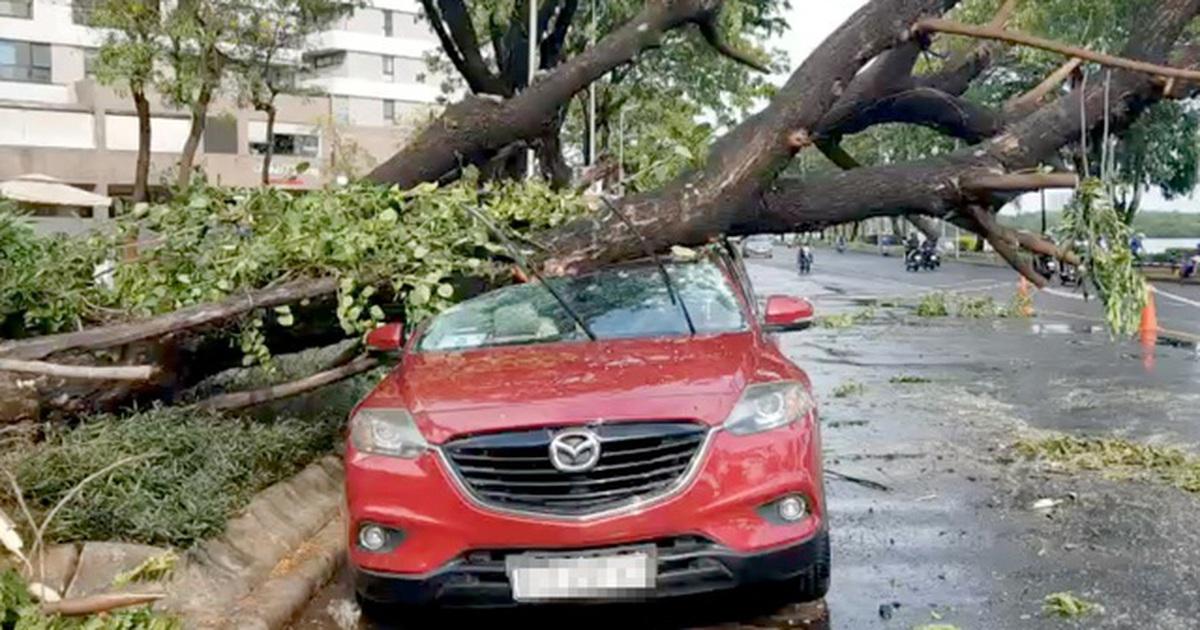 TP HCM sắp đón nhiều đợt mưa lớn, người dân cẩn thận khi ra đường