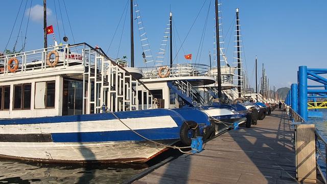 Cận cảnh những con tàu tiền tỉ đắp chiếu tại Cảng do bão Covid-19 - 2