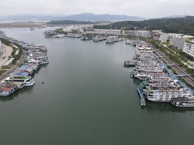 Cận cảnh những con tàu tiền tỉ đắp chiếu tại Cảng do bão Covid-19 - 8