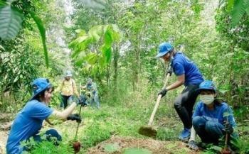 Ngày Môi trường thế giới 2021: Bắt đầu công cuộc phục hồi hệ sinh thái