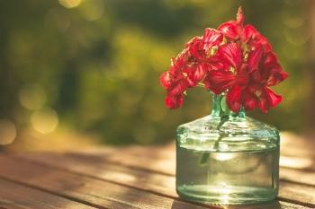 Tử vi ngày 18/2/2021: Tuổi Sửu tạo được uy tín, tuổi Mùi thu về lợi nhuận