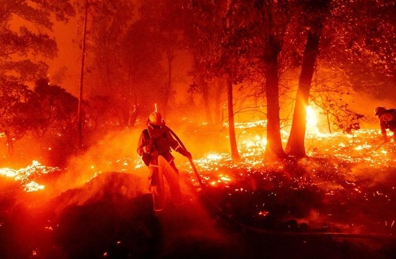 Cháy rừng ở bang California (Mỹ): Hơn 800.000 hécta rừng đã bị thiêu rụi