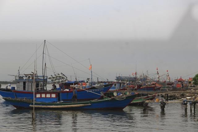 """Nhiều tỉnh miền Trung """"cấm biển"""", cho học sinh nghỉ học tránh bão - 3"""