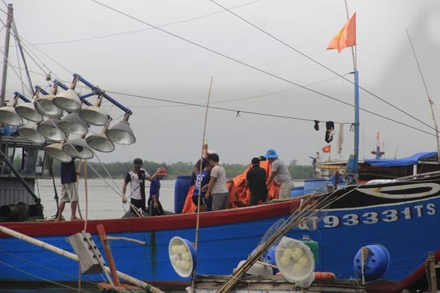 """Nhiều tỉnh miền Trung """"cấm biển"""", cho học sinh nghỉ học tránh bão - 5"""