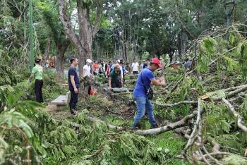 Người Huế thu dọn hơn 10.000 cây đổ