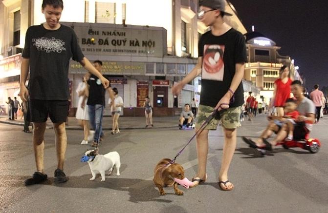 Hà Nội yêu cầu không nói tục và dắt, thả thú cưng ở phố đi bộ hồ Hoàn Kiếm