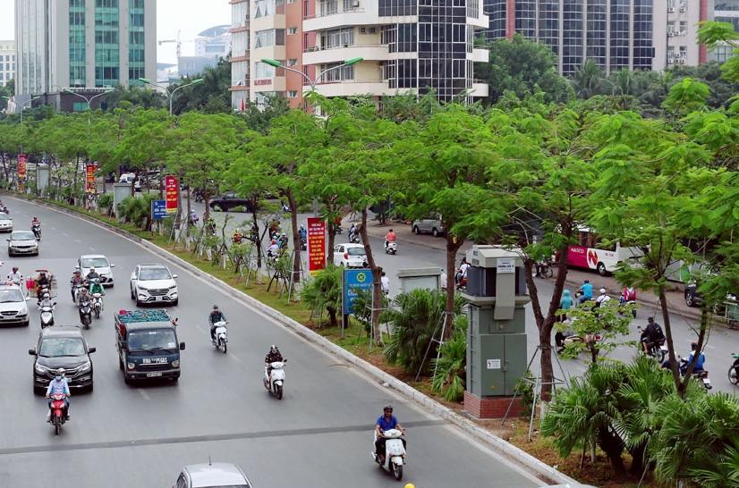 Hà Nội sắp hoàn thành kế hoạch trồng 600.000 cây xanh