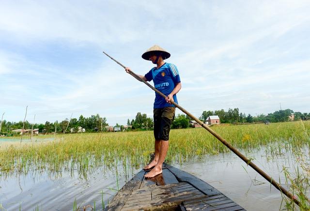 Nông dân miền Tây chật vật mưu sinh mùa nước lũ - 3