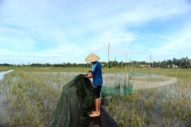 Nông dân miền Tây chật vật mưu sinh mùa nước lũ - 5