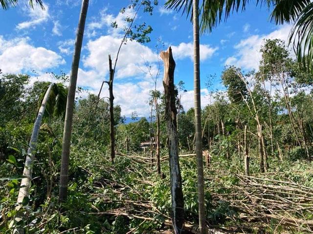 Huyện miền núi ở Thừa Thiên Huế có nguy cơ sạt lở - 1