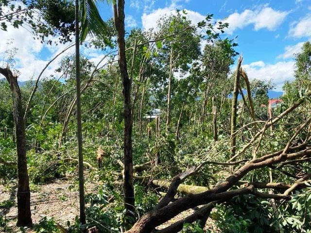 Huyện miền núi ở Thừa Thiên Huế có nguy cơ sạt lở - 2