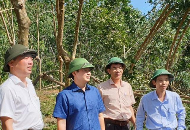 Huyện miền núi ở Thừa Thiên Huế có nguy cơ sạt lở - 9