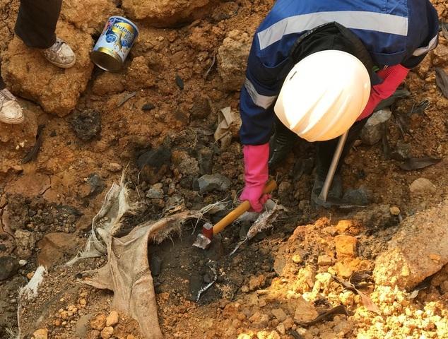 Sẽ thanh tra chuyên đề các cơ sở xử lý chất thải nguy hại trên toàn quốc