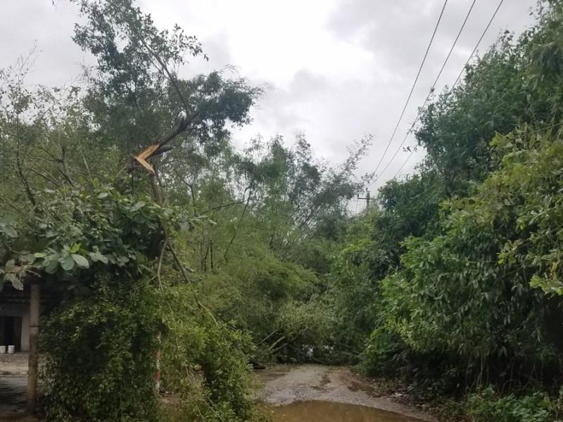 Quảng Bình ứng phó kịp thời, giảm tổn thất do bão 13 gây ra -0