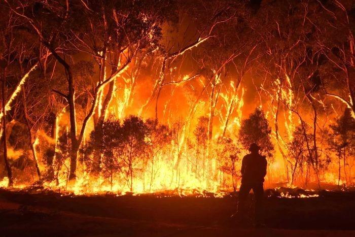 Năm 2020 là một trong ba năm nóng nhất thế giới