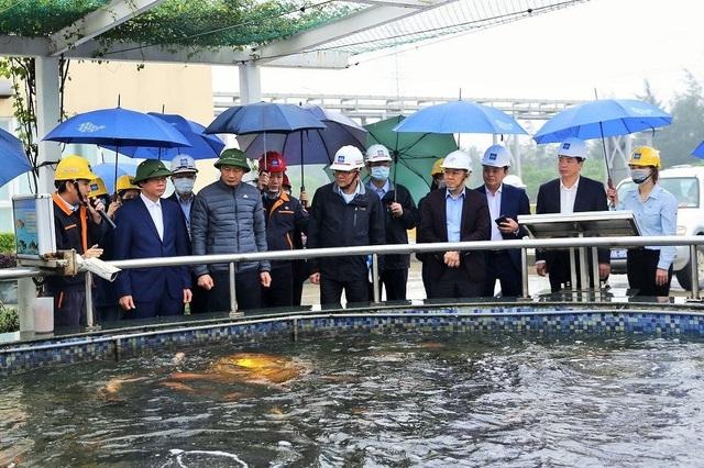 Đánh giá kết quả khắc phục các vi phạm của Formosa Hà Tĩnh