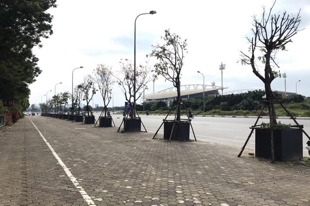 """Hà Nội: Cách trồng khác lạ khiến """"mười cây chết chín, một cây gật gù"""""""