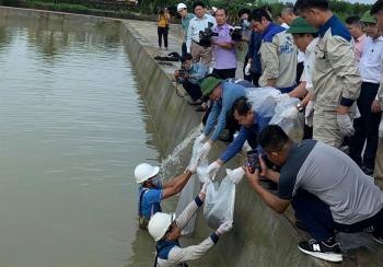 Năm 2020: Việt Nam hứng chịu 576 trận thiên tai khiến 357 người chết và mất tích