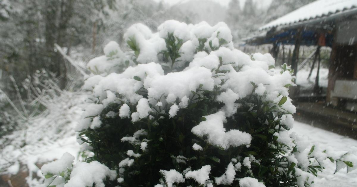 Đỉnh Fansipan có thể đón mưa tuyết dịp Tết Dương lịch