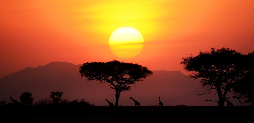Thám hiểm châu Phi qua ảnh