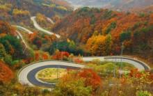 Thiên đường mùa thu châu Á