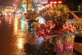chuyen ve nhung phu nu ban hoa rong