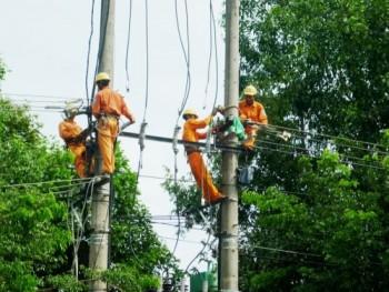 Điện lực Quảng Nam đồng hành xây dựng nông thôn mới
