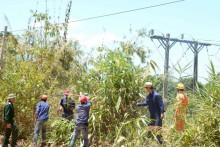 Kom Tum: Đảm bảo cấp điện mùa mưa bão