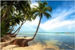 Báo nước ngoài bình chọn 5 bãi biển đẹp nhất Việt Nam