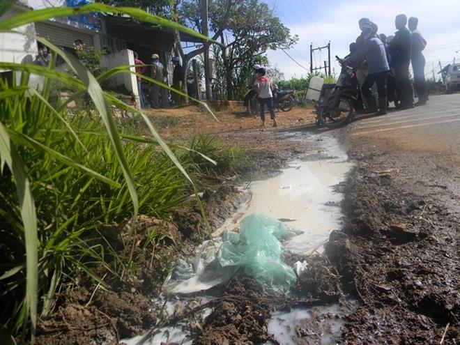 Nông dân đổ sữa ra đường và trách nhiệm của doanh nghiệp