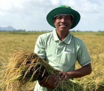 Đạm Cà Mau – Đồng hành cùng nông dân trên từng mảnh vườn, thửa ruộng
