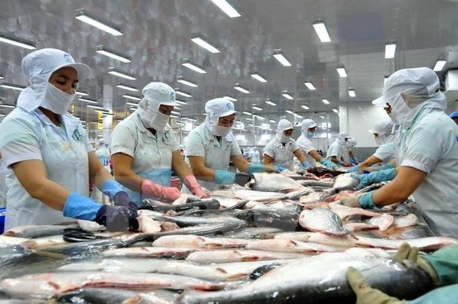 Thúc đẩy xuất khẩu trực tiếp vào kênh phân phối nước ngoài