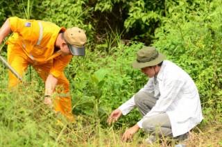 PV GAS tích cực tham gia trồng cây xanh bảo vệ môi trường