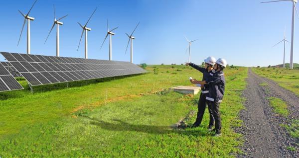 FECON tiếp tục trúng thầu dự án điện gió giá trị hơn 430 tỷ đồng