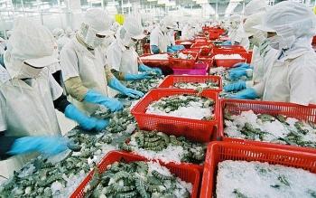Ưu thế và thách thức của tôm Việt tại thị trường Mỹ và EU