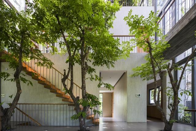 Công trình nhà ở tại Việt Nam giành giải kiến trúc quốc tế - 12