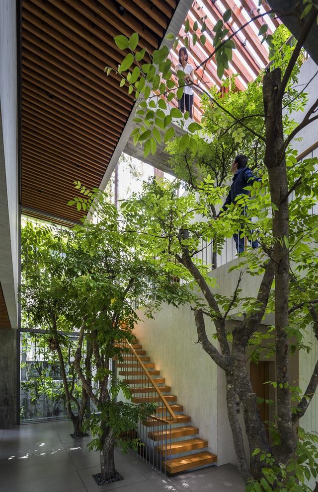 Công trình nhà ở tại Việt Nam giành giải kiến trúc quốc tế - 3