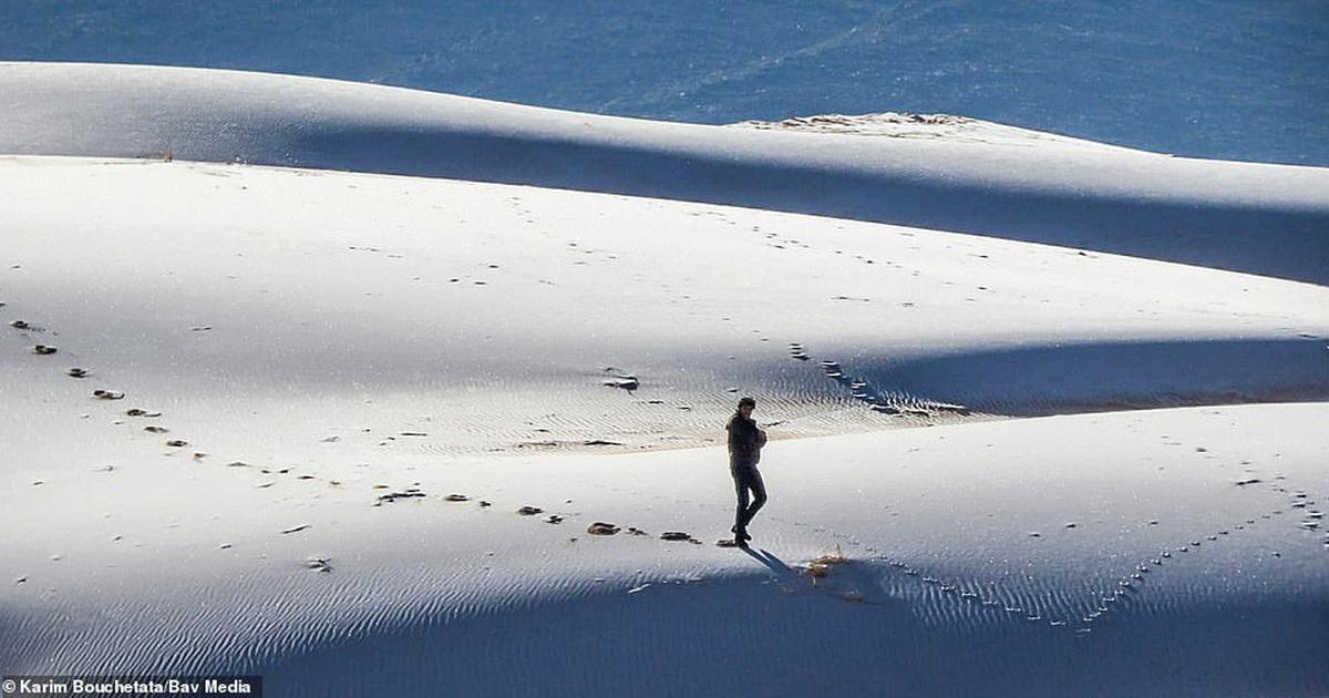Băng tuyết bất ngờ phủ trắng sa mạc Sahara