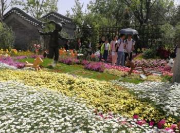 Quảng Bình tổ chức triển lãm lễ hội hoa quốc tế