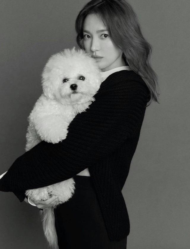 Ảnh thời nặng 70kg của Song Hye Kyo gây sốt mạng xã hội - 14