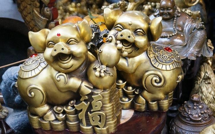 muon ve ngo nghinh cua linh vat nam 2019