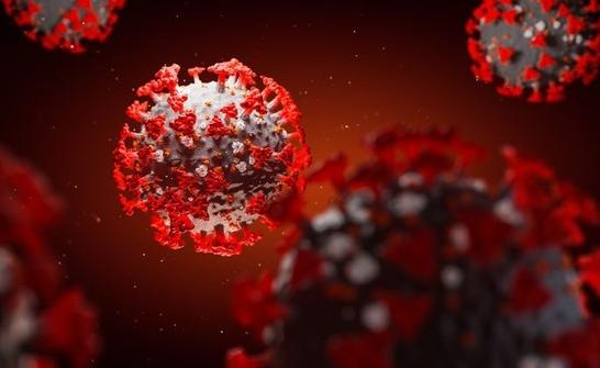 Toàn bộ số vi rút SARS-CoV-2 trên thế giới có thể nằm gọn một lon nước ngọt