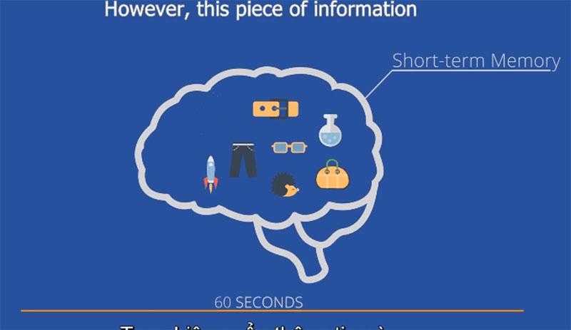 [VIDEO] Phương pháp giúp trí nhớ ngắn hạn thành dài hạn