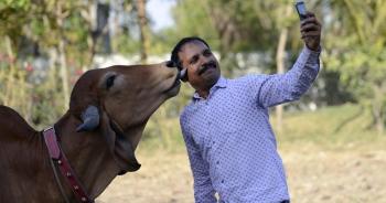 """Ấn Độ đau đầu vì nhiều người chết do mải chụp ảnh """"tự sướng"""""""