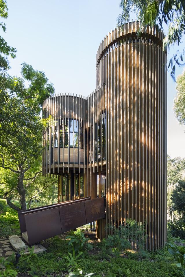 Dinh thự phong cách safari sang trọng giữa rừng cây ở Nam Phi - 11
