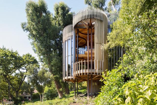 Dinh thự phong cách safari sang trọng giữa rừng cây ở Nam Phi - 2